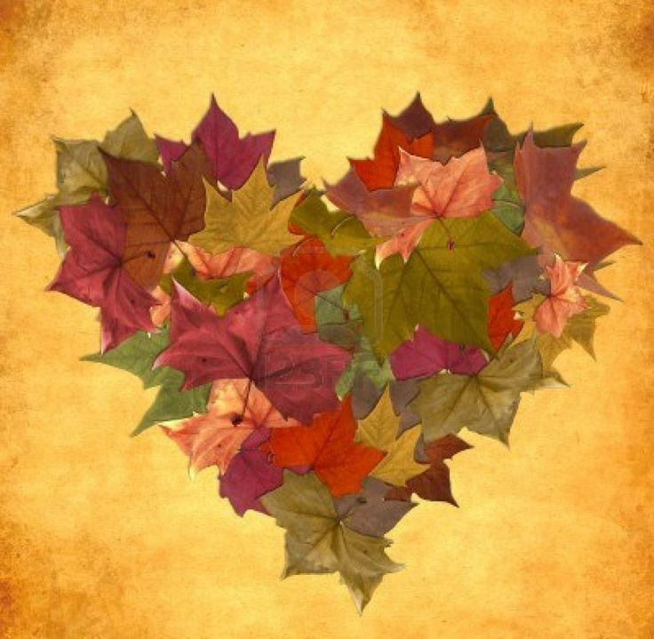 Autumn Love            Autumn   Harvest   Thanksgiving   Pin