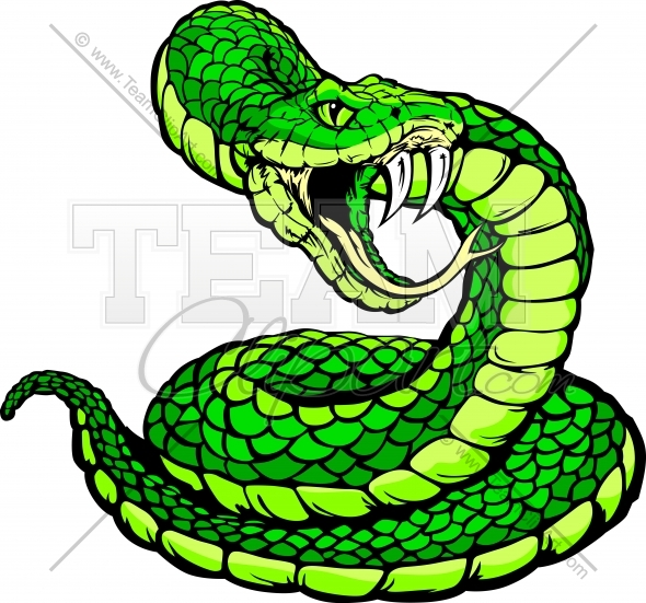 Viper Or Coiled Snake Body Vector Clipart Image   Team Clipart  Com