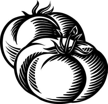 Tomato Icon Black And White Keywords  Black And White Food