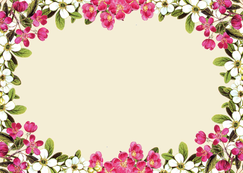 Free Clip Art White Flowers