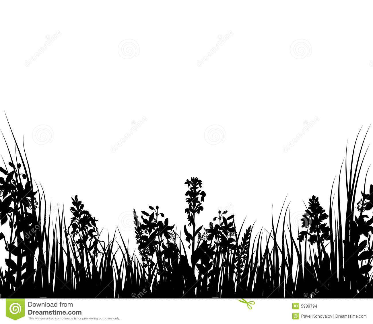 Vector Grass And Flowers Stock Images   Image  5989794
