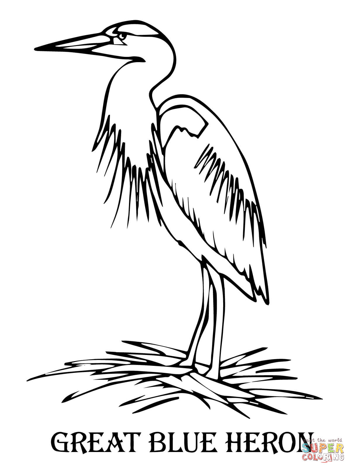 blue heron coloring pages - photo#5