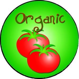Organic Tomatoes Proven Better Than Conventional
