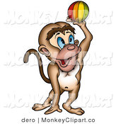 Playful Blue Eyed Monkey Catching Or Throwing A Colorful Ball By Dero