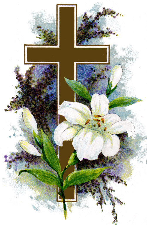 Free Clip Art Easter Lily  White Easter Lily Cross