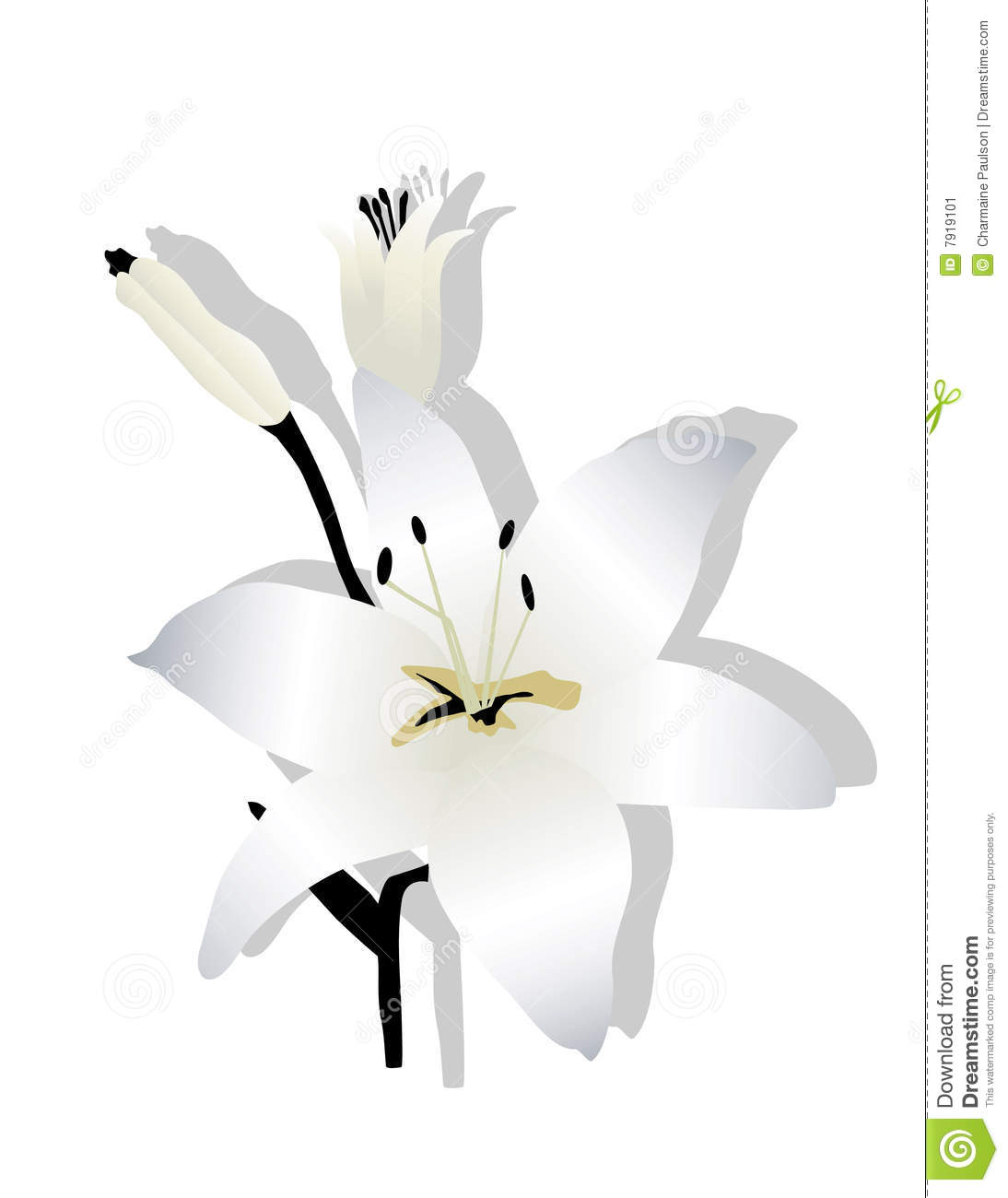 easter lilies free clipart - photo #40