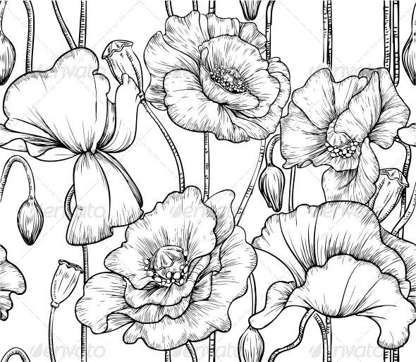 Seamless Pattern Of Black And White Poppies  Flowers   Plants