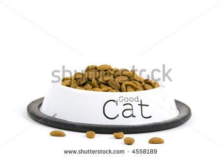 Cat bowl clipart