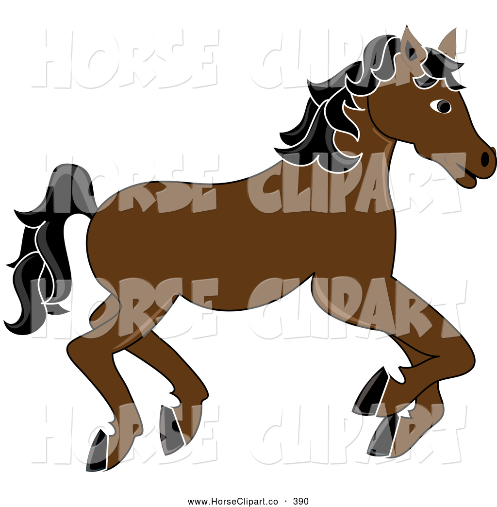 Funny Horse Running Funny Horse Jokes For Kids Funny Horse Race Call