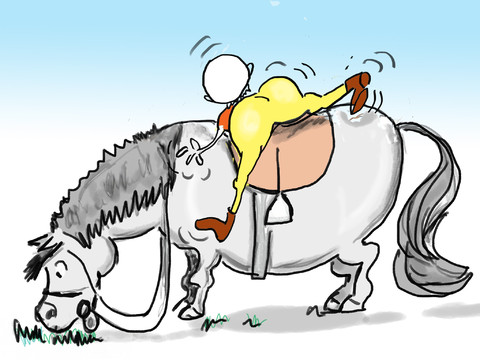 Funny Horses Cute Funny Horse Pictures Funny Arabian Horse Pictures Fattest Animal In The World