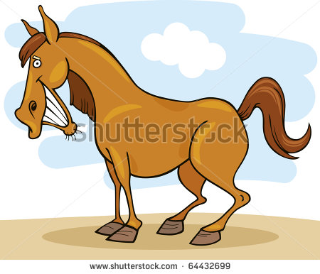 Pictures Funny Horse Clipart Image Funny Looking Cartoon Horse Drawing