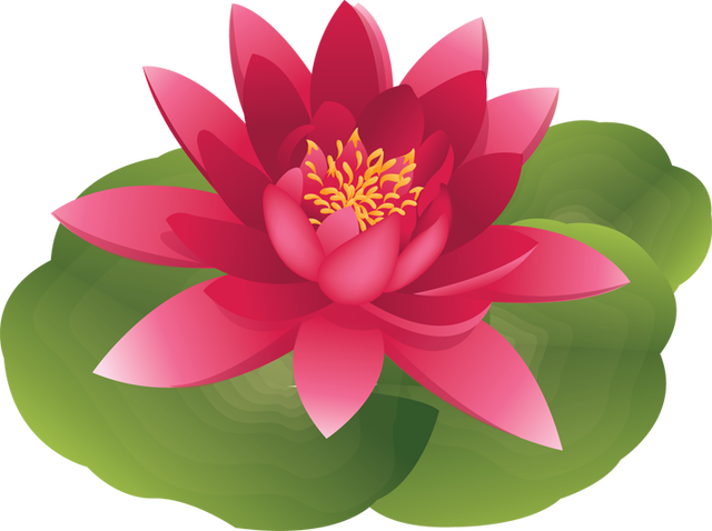 Water Lily Pad Flower Clip Art