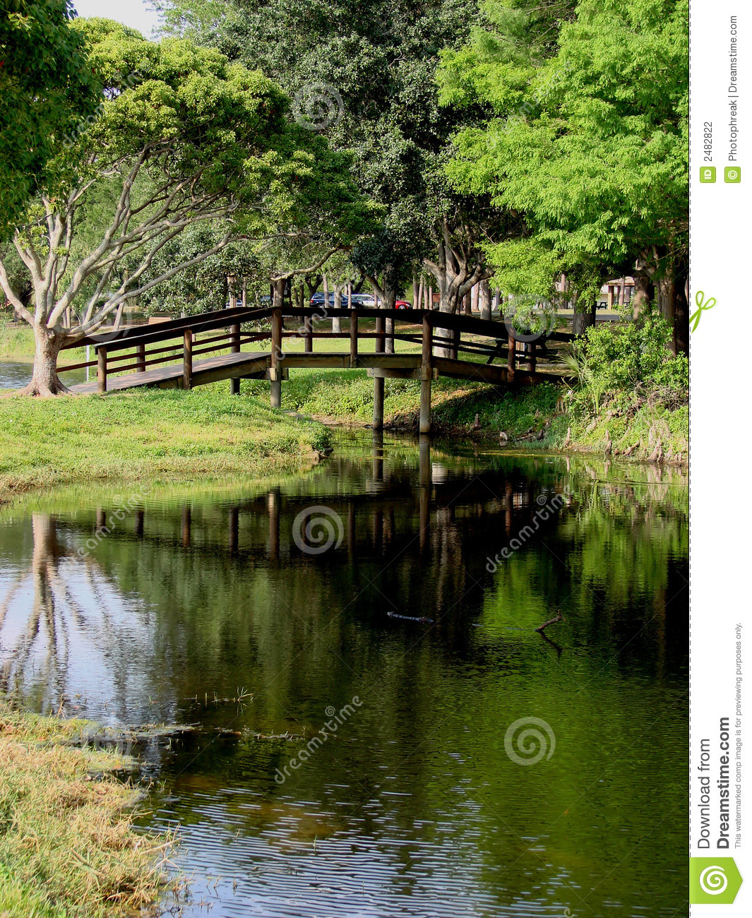 Wooden Bridge Crossing Over Pond Or Stream Trees And Grassy Shore