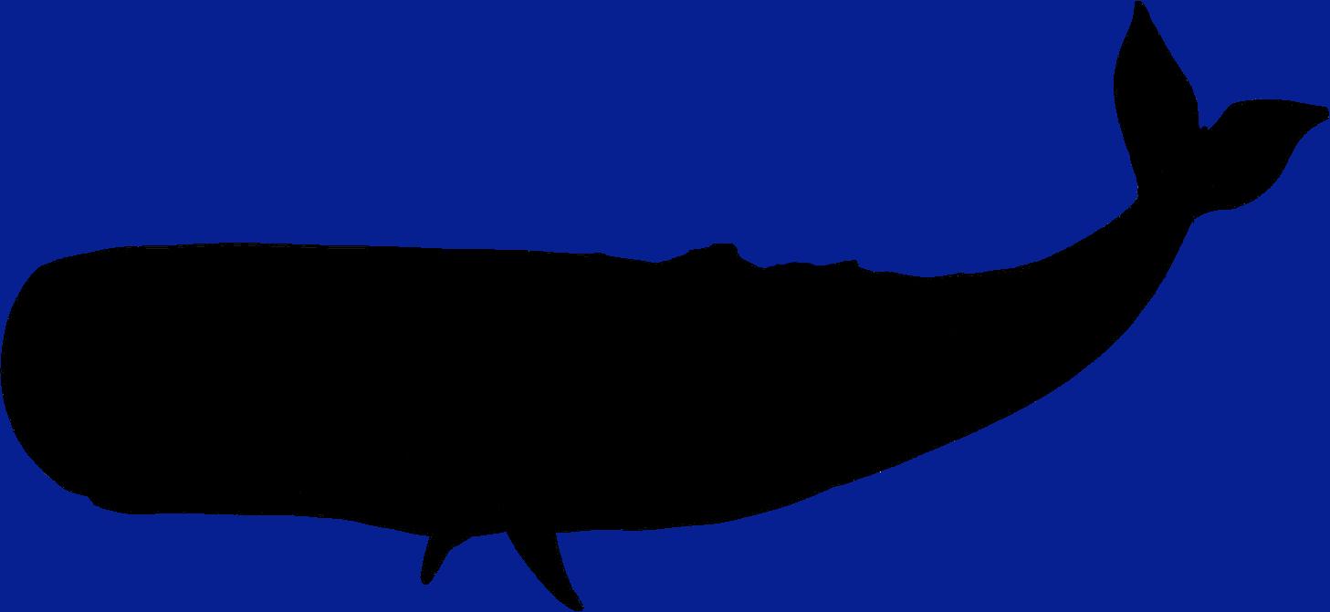 Whale Silhouette Clipart - Clipart Kid