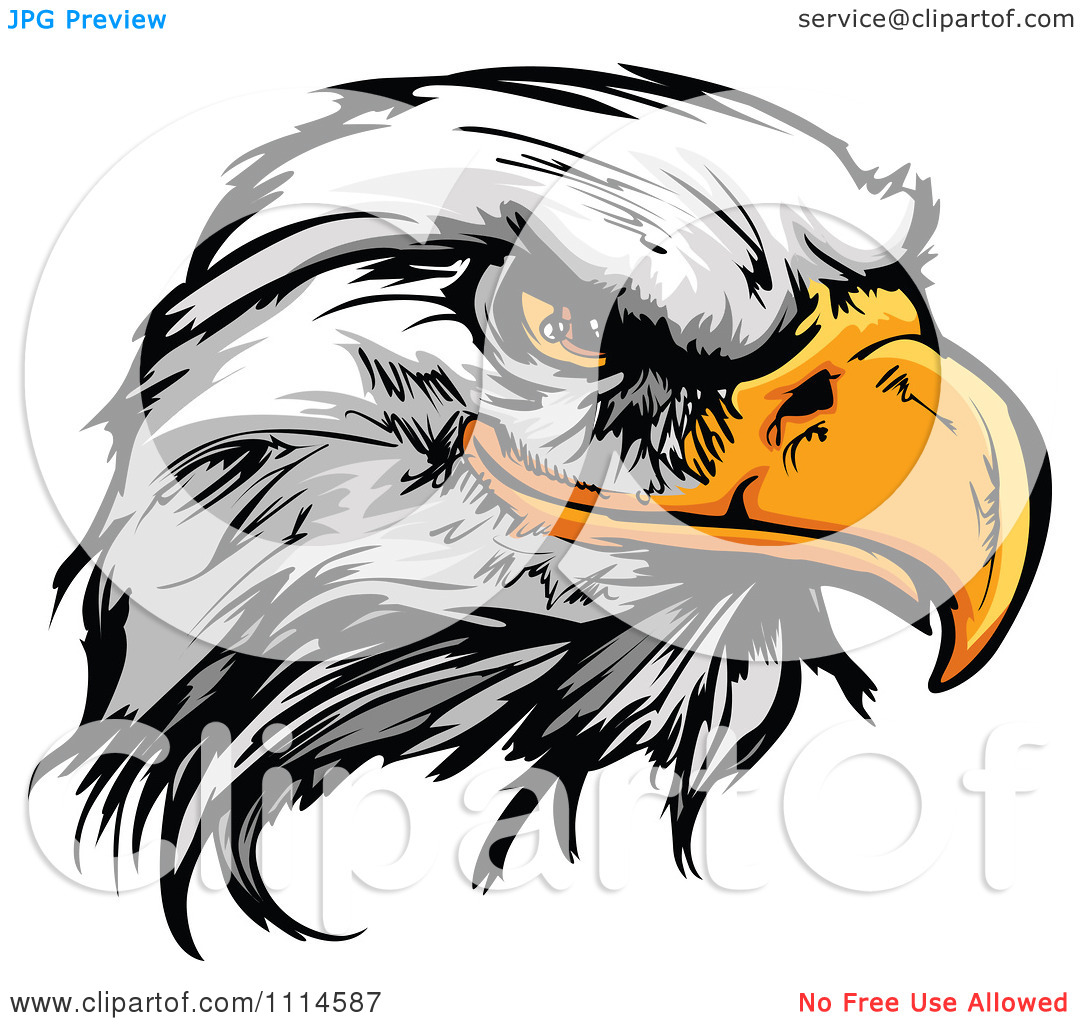 Clipart Fierce Bald Eagle Mascot Head   Royalty Free Vector