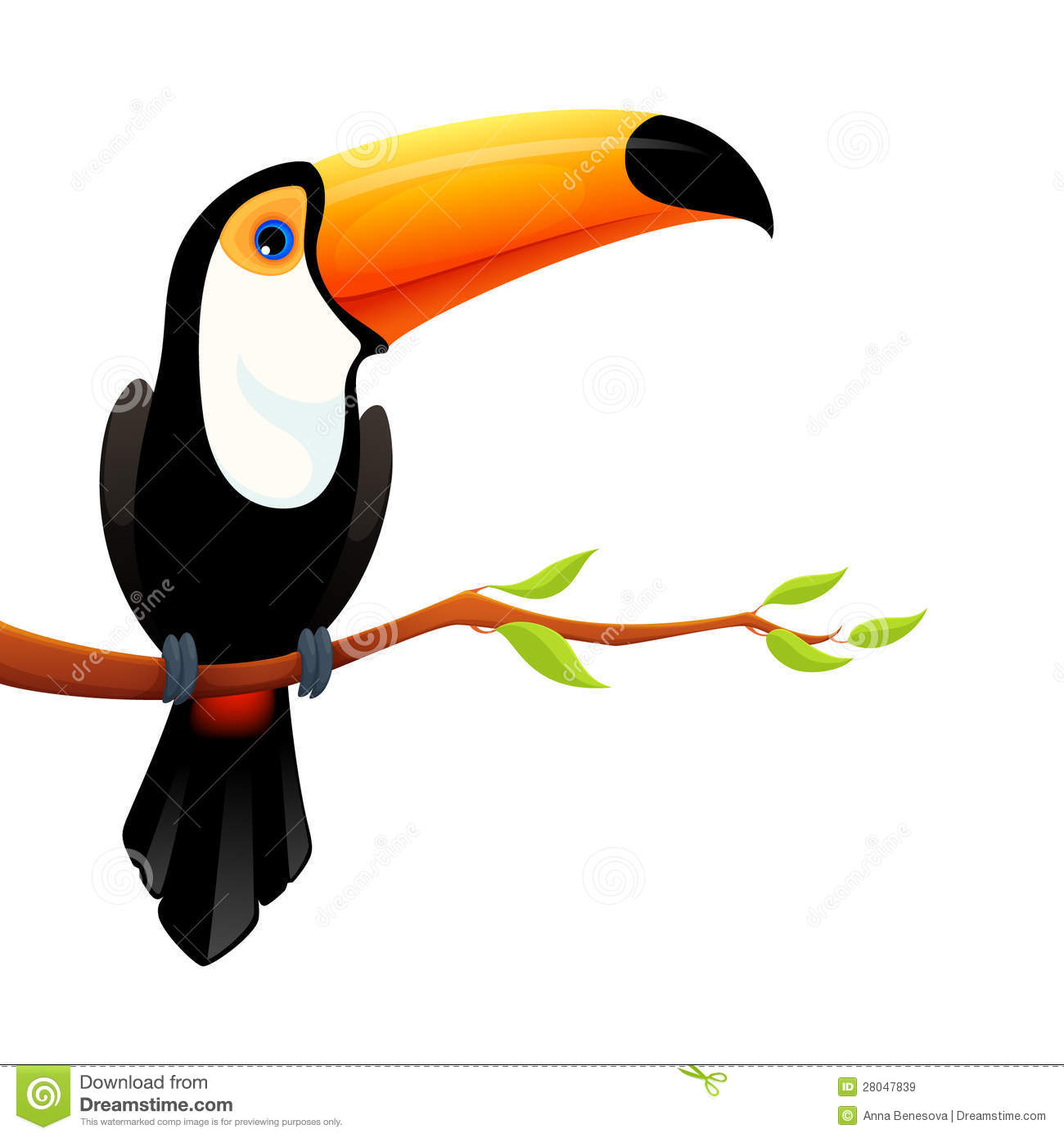 Clip Art Toucan Clipart toucan clipart kid colorful illustration of a cute royalty free stock images