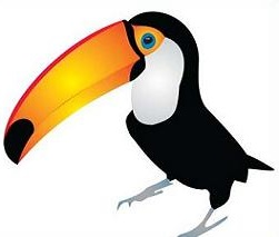 Clip Art Toucan Clipart toucan clipart kid free clipart