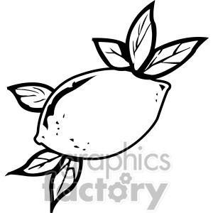 Royalty Free Black And White Lemon Clipart Image Picture Art   141821