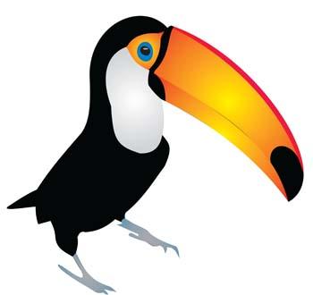 Clip Art Toucan Clipart toucan clipart kid best