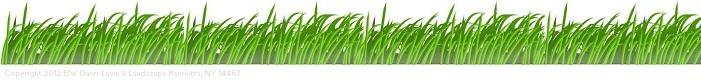 Grass Lawn Care Clip Art