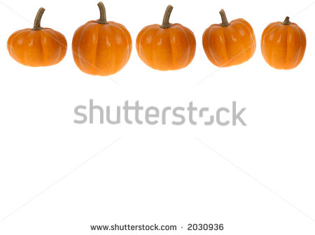 This Stock Photo Features A White Background And Row Of Mini Pumpkins