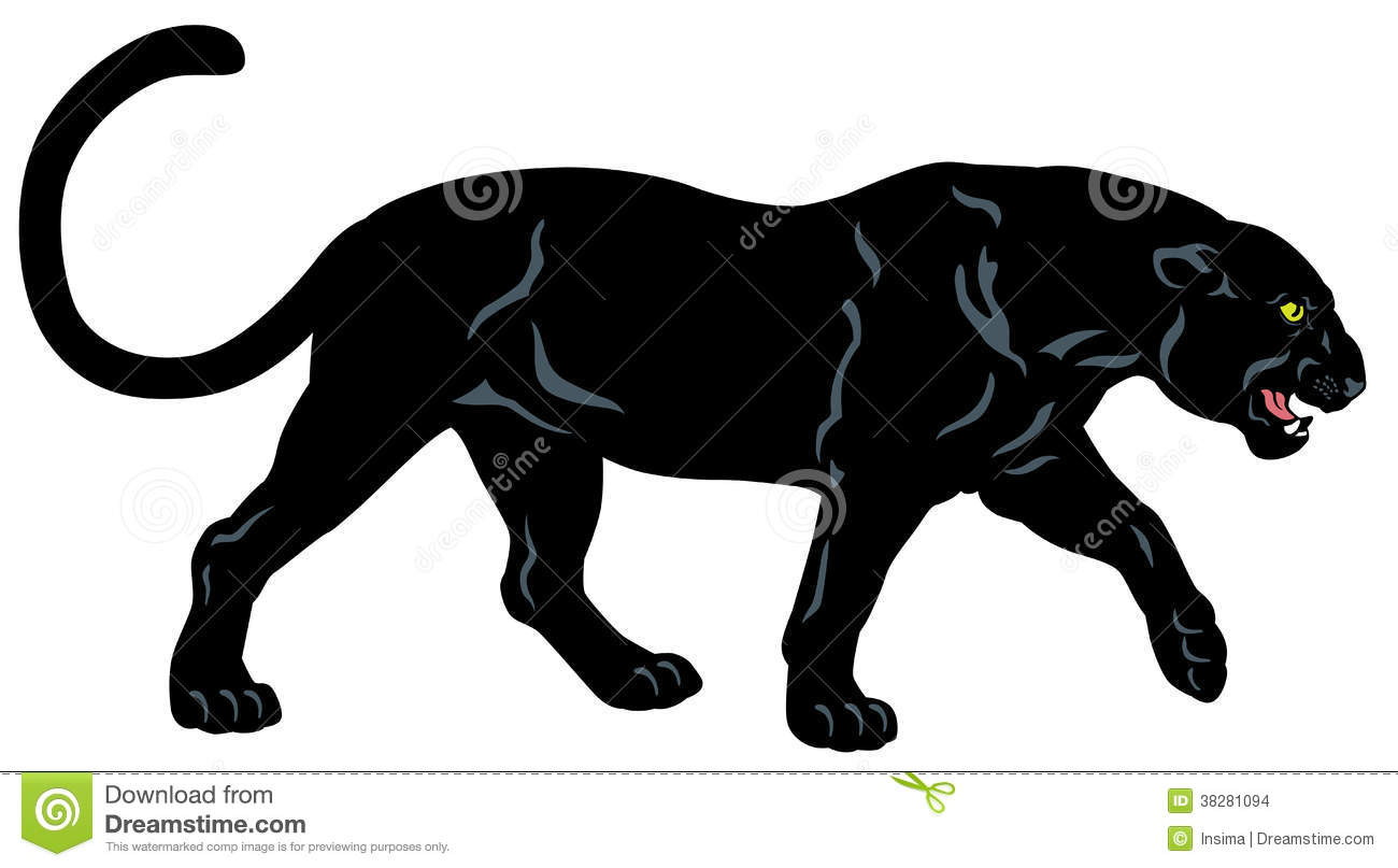 Black Panther Side View Image Isolated On White Background