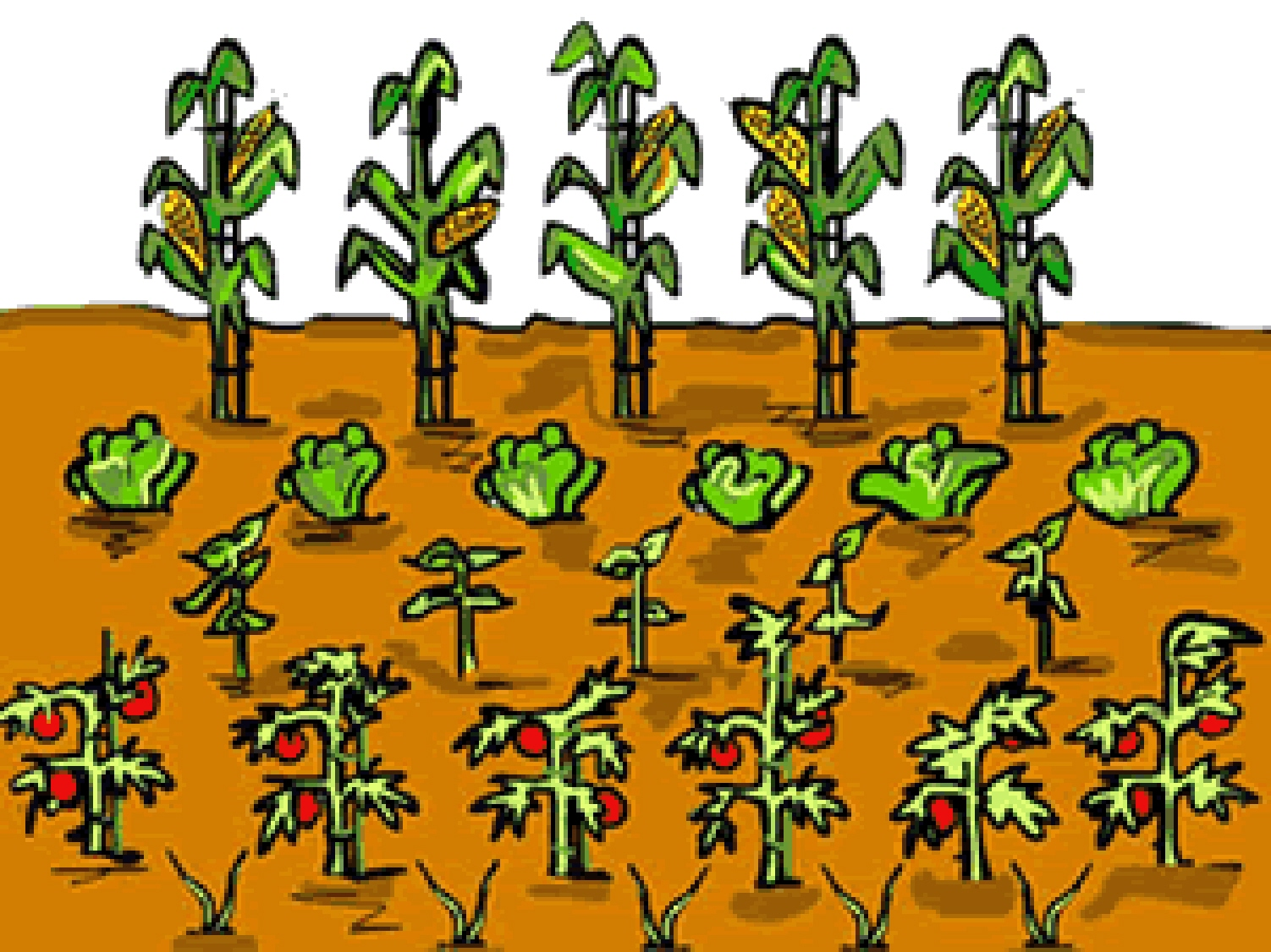 clipart garden images - photo #22