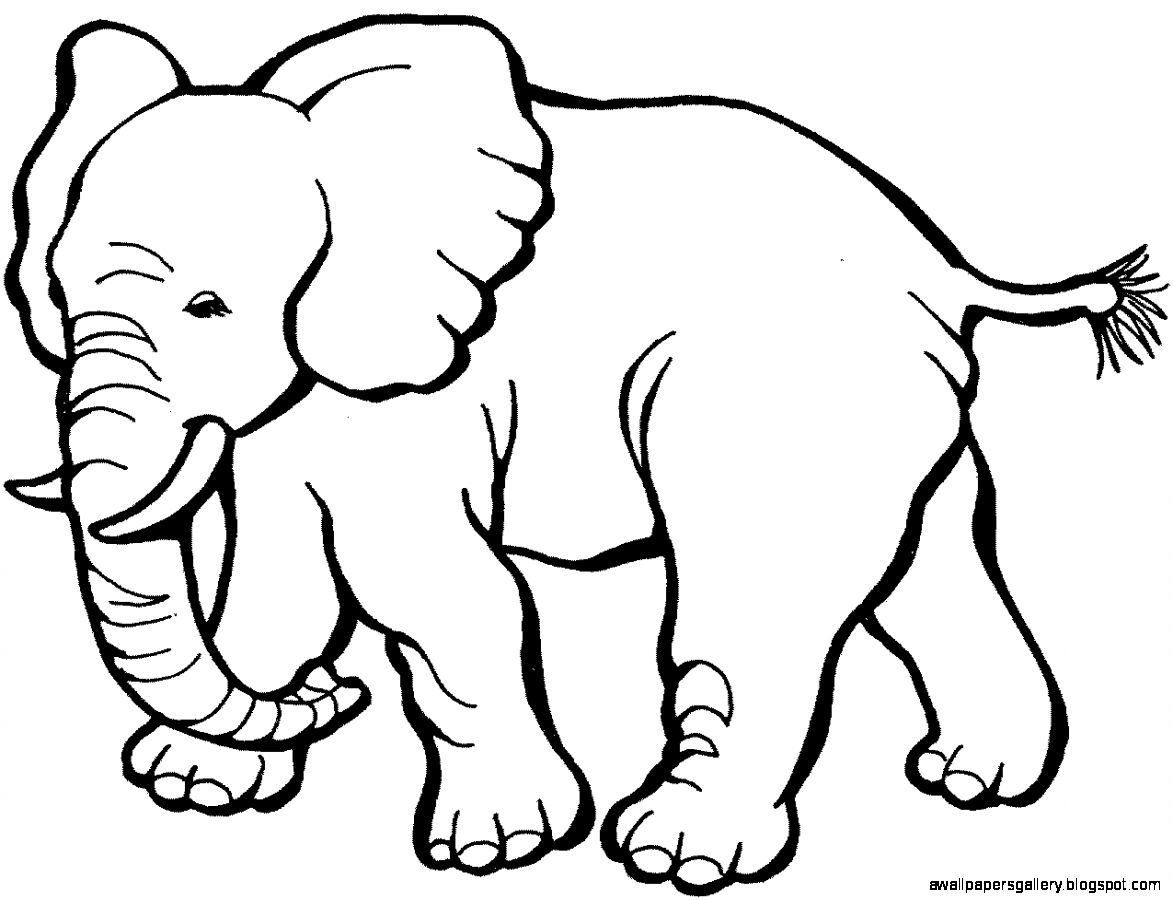 Elephant Black And White Clipart - Clipart Kid