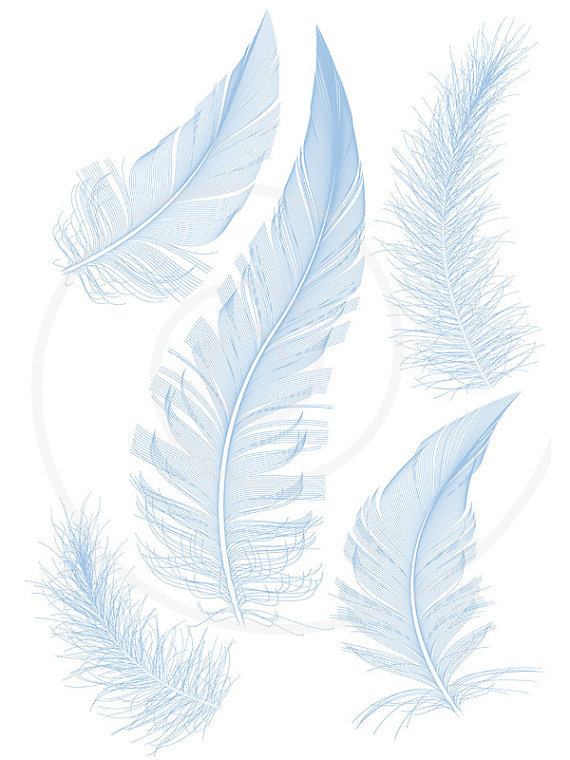 Blue Bird Feathers Clipart Clip Art Printable Illustration Drawing