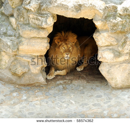 Animal Cave Stock Photos Illustrations And Vector Art