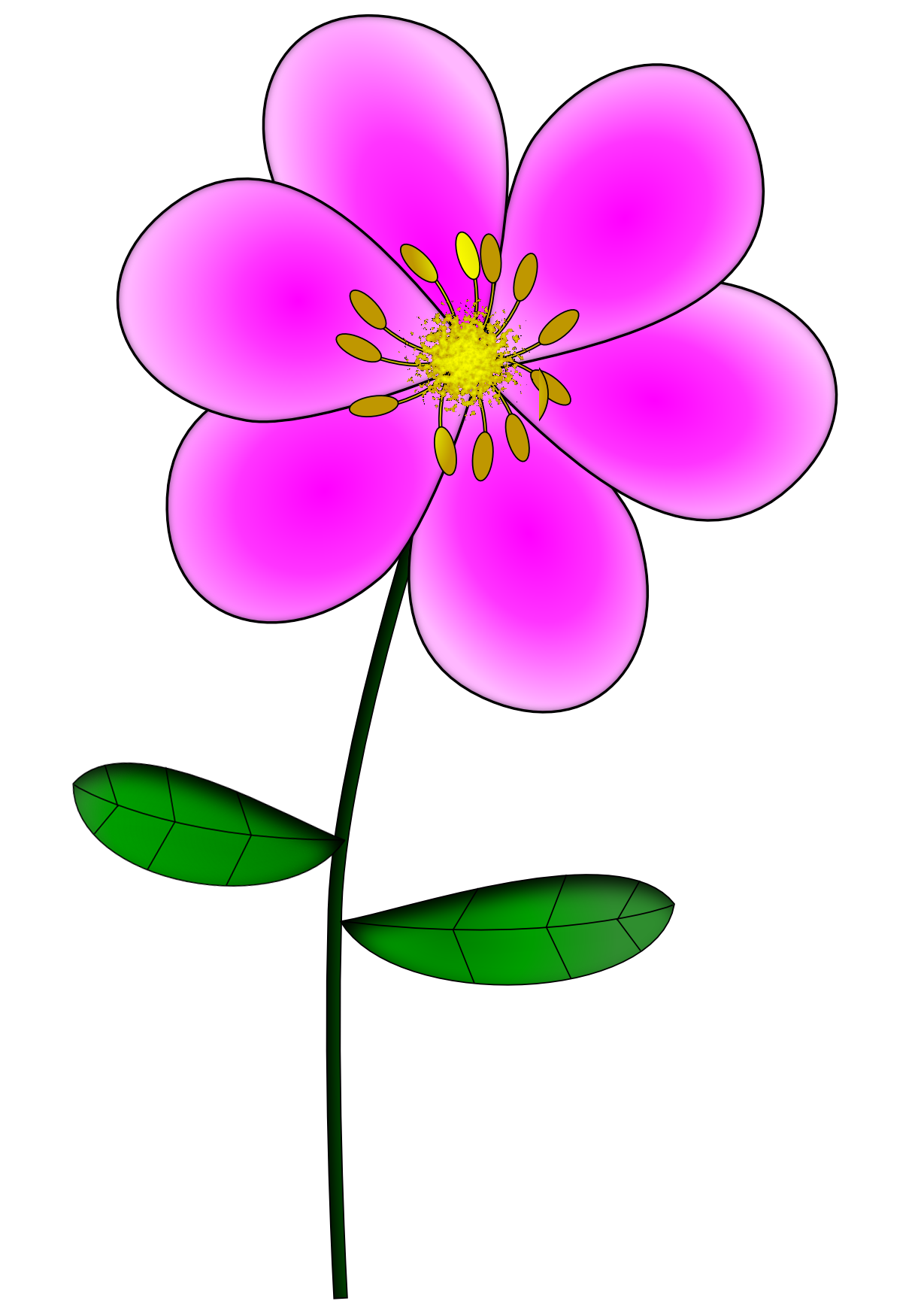 Поэтапно рисунок сакуры