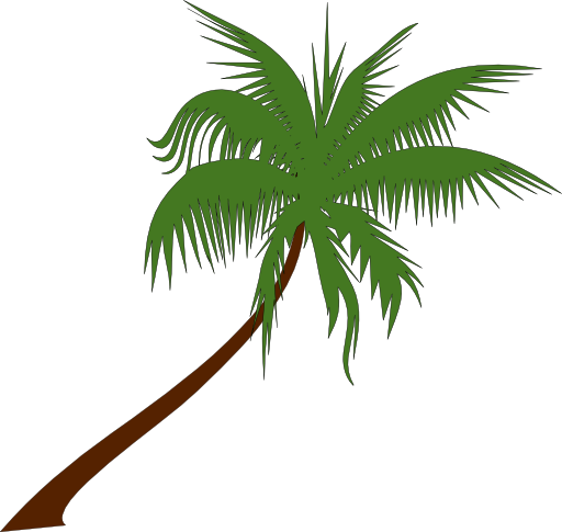 Palm Tree Clip Art Clipart Palm Tree 512x512 799a Png