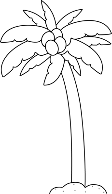 Palm Tree Clip Art Image   Black And White Outline Of A Palm Tree