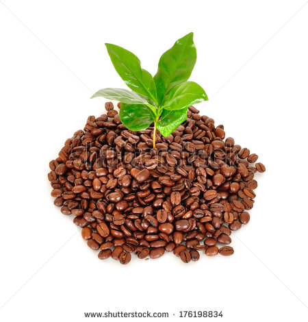 Coffee grounds clipart clipart suggest for Painting with coffee grounds