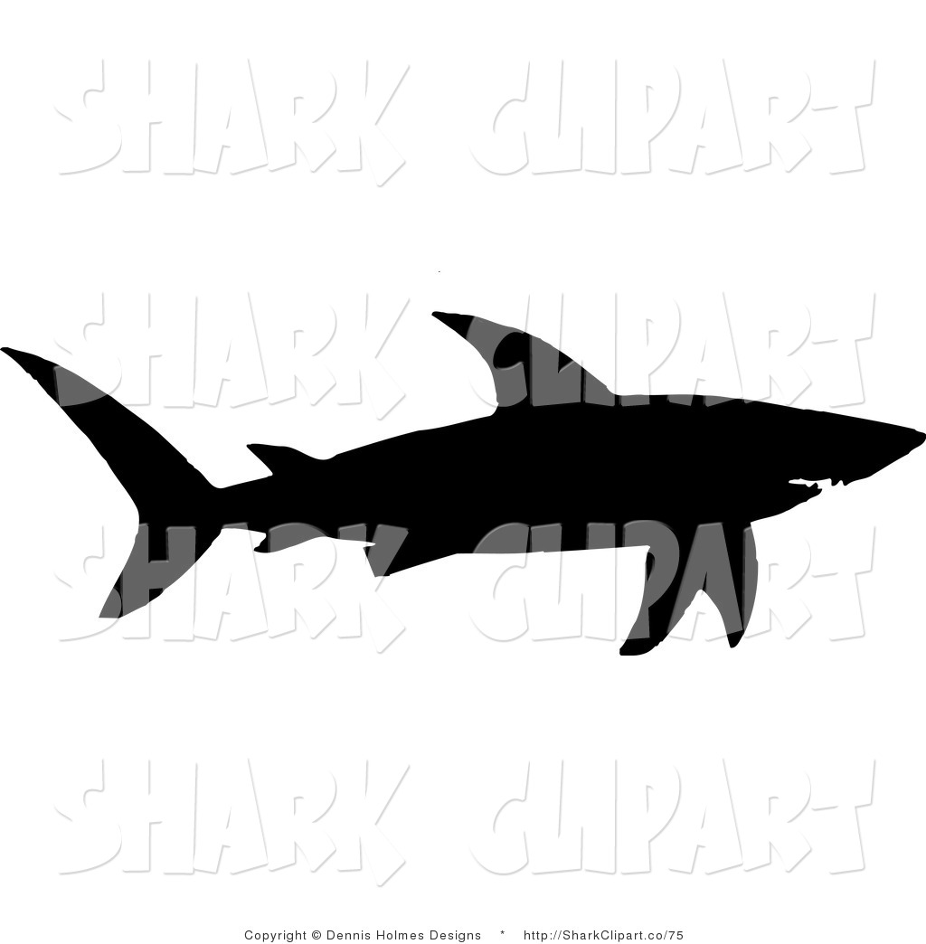 Shark 20clipart   Clipart Panda   Free Clipart Images