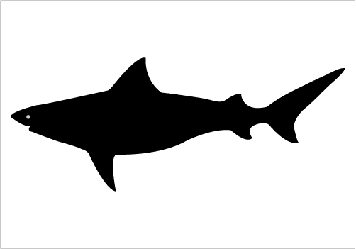 Shark Silhouette Graphics Silhouette Graphics