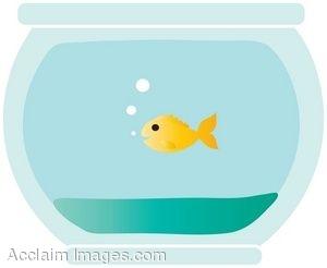 Goldfish Bowl Clipart - Clipart Kid