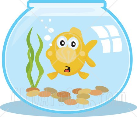 Goldfish Bowl Clipart Image Search Results