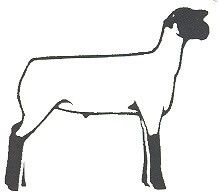 Livestock Ga 4 H Cans Hunger Lambs Clipart Livestock Clipart 4 H ...