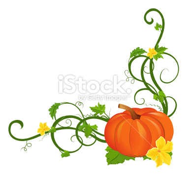 Pumpkin Vine Art Stock Illustration 14028953 Pumpkin Vine Border Jpg