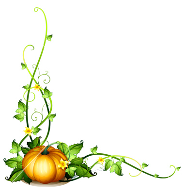 Pumpkin Vine Decor Vector By Iimages   Image  1240889   Vectorstock