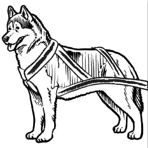 Dog Sled Clipart - Clipart Kid