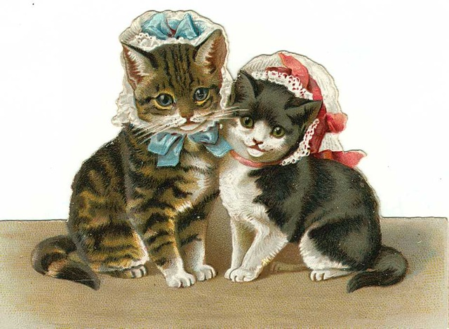 Free Vintage Cat Clip Art Two Cats In Lacy Bonnets