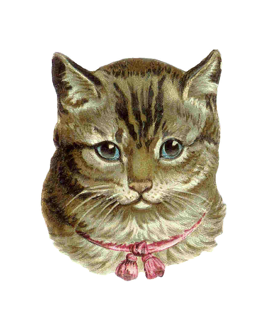 Google Images I Found This Super Sweet Vintage Kitty Clip Art  Source
