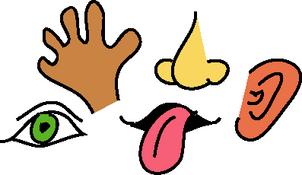 senses-clipart-sense-of-sight-clipart-GPxHJ8-clipart.png