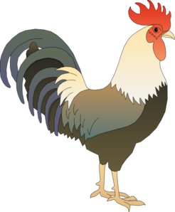 Morning Rooster Clipart - Clipart Suggest