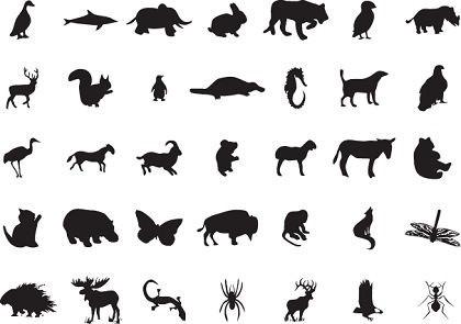 Jungle animal silhouette clipart clipart suggest - Image d animaux gratuit ...