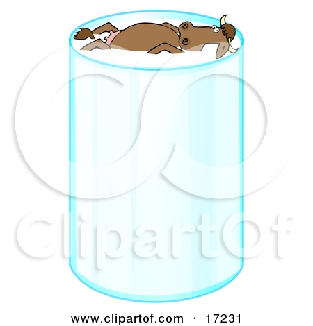 Happy Relaxed Brown Cow With Horns Leisurely Floating And Taking A