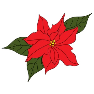 Poinsettia Clipart Image   Poinsettia Bloom