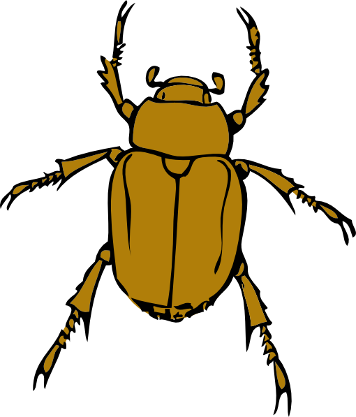 Beetle Bug Clip Art At Clker Com   Vector Clip Art Online Royalty